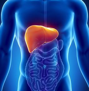 img-primeira resseccao-de-tumor-hepatico